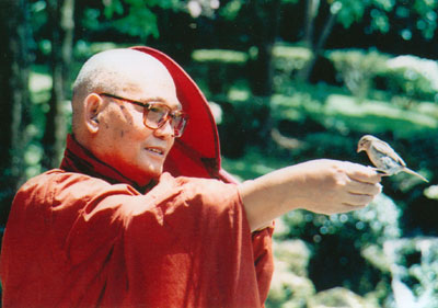 Sayadaw U Pandita and bird